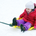 Pulling the sled�